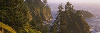 Trees on Rocks, Pacific Ocean, Boardman State Park, Oregon, USA--Photographic Print