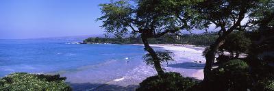 Trees on the Beach, Mauna Kea, Hawaii, Usa--Photographic Print