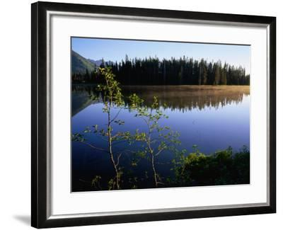 Trees Reflected in Lake Grand Teton National Park, Wyoming, USA-Rob Blakers-Framed Photographic Print