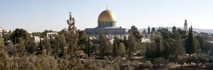 Trees with Mosque in the Background, Dome of the Rock, Temple Mount, Jerusalem, Israel