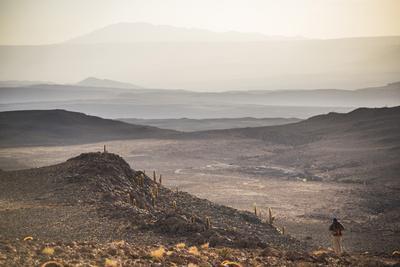Trekking at Sunset in Cactus Valley (Los Cardones Ravine), Atacama Desert, North Chile-Matthew Williams-Ellis-Photographic Print