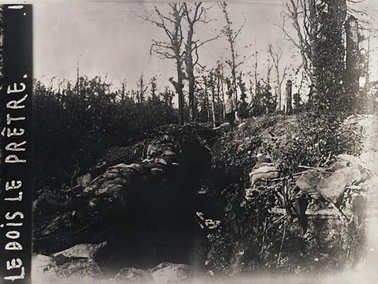 Trenches, Bois-le-Prêtre, Lorraine, northern France, c1914-c1918-Unknown-Photographic Print
