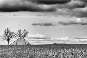 Crisp Fall Day by Trent Foltz