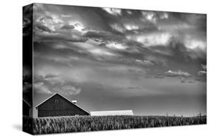 Just South of Town by Trent Foltz