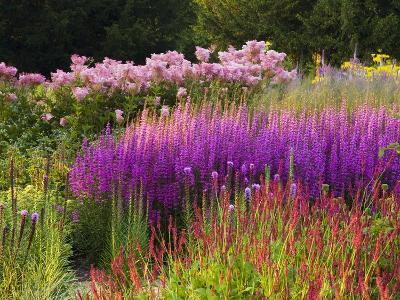 Trentham Gardens-Clive Nichols-Photographic Print