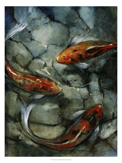 Tres Koi II-Tim O'toole-Art Print