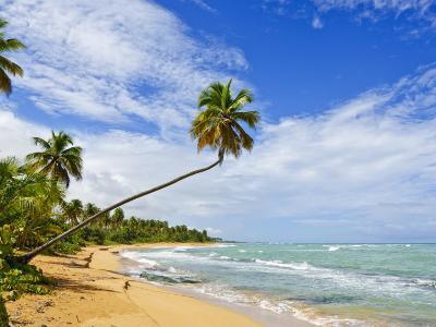 Tres Palmitas Beach, Puerto Rico, West Indies, Caribbean, Central America-Michael DeFreitas-Photographic Print