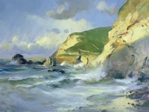 Cliffs at St. Agnes by Trevor Chamberlain