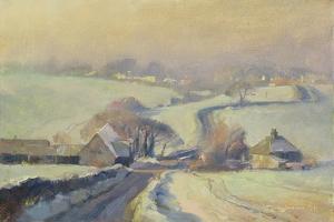 Frosty Fields, Aston, 1991 by Trevor Chamberlain