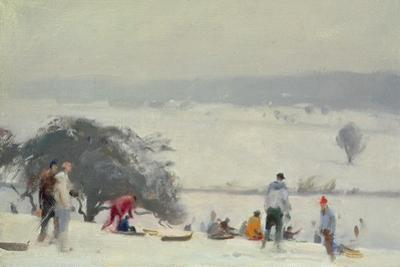 Tobogganing, the Meads, Hertford by Trevor Chamberlain