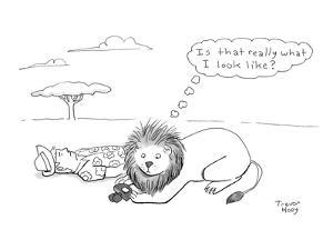 """""""Is that what I really look like?"""" - Cartoon by Trevor Hoey"""