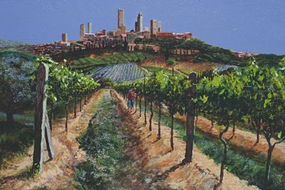Grape Vines, San Gimignano, Tuscany, 1998