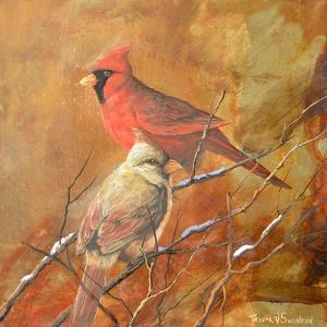 Birds by Trevor V. Swanson