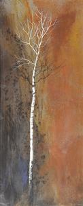 Canyon Ward by Trevor V. Swanson