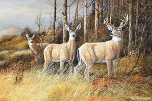 Deer by Trevor V. Swanson
