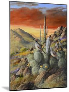 Desert by Trevor V. Swanson