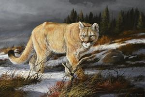 Evening Hunter by Trevor V. Swanson