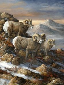 High Country Trio by Trevor V. Swanson