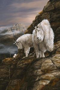 Overlook by Trevor V. Swanson