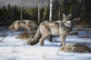 Pack Leaders by Trevor V. Swanson