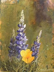 Poppies and Lupine by Trevor V. Swanson