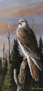 Storm Watcher by Trevor V. Swanson