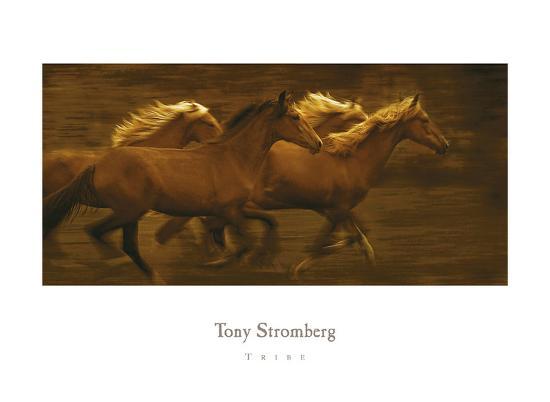 Tribe-Tony Stromberg-Art Print