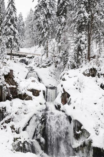 Triberg Waterfalls in Winter, Triberg, Black Forest, Baden-Wurttemberg, Germany, Europe-Markus Lange-Photographic Print