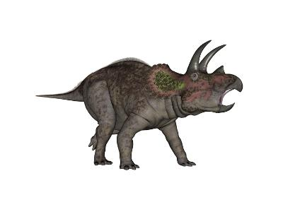 Triceratops Dinosaur-Stocktrek Images-Art Print