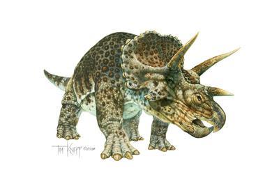 https://imgc.artprintimages.com/img/print/triceratops_u-l-pyo49f0.jpg?p=0
