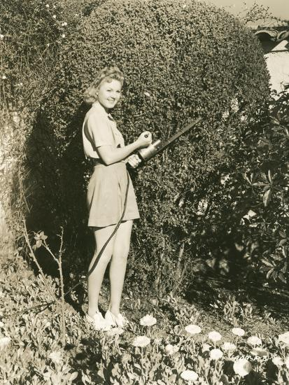 Trimming the Hedges--Photo