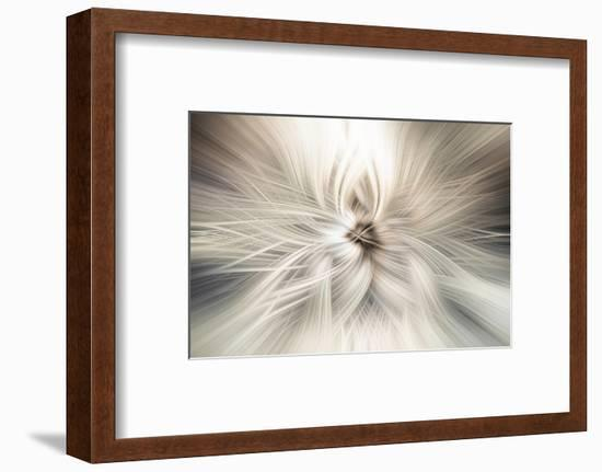 Trinity Collection 10-Philippe Saint-Laudy-Framed Photographic Print