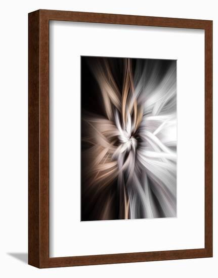 Trinity Collection 128-Philippe Sainte-Laudy-Framed Photographic Print