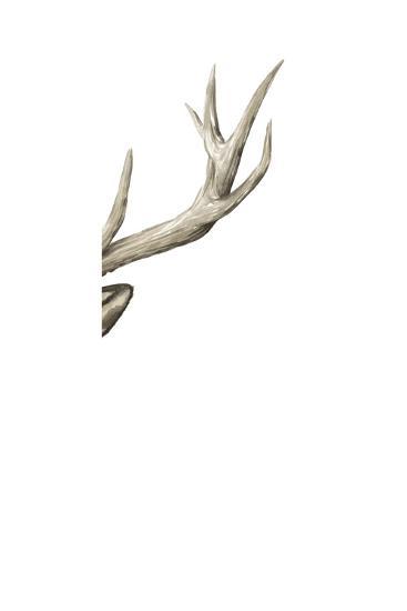 Triptych Elk III-Grace Popp-Art Print