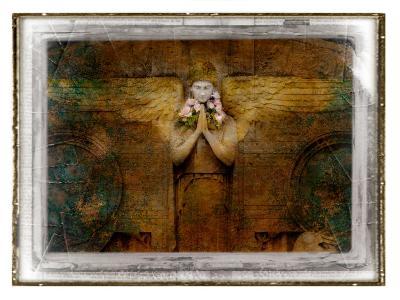 Trisal-Craig Satterlee-Photographic Print