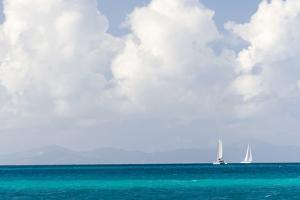 Bvi, Sailboats Navigate Caribbean Sea by Trish Drury