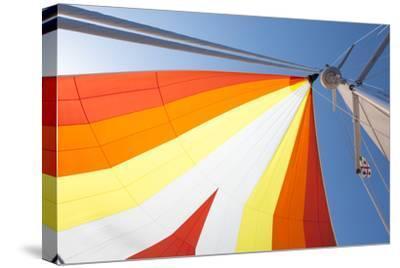 Europe, Italy Mediterranean, Sailboat Spinnaker Colorful Display