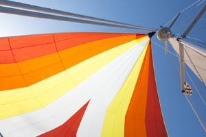 Europe, Italy Mediterranean, Sailboat Spinnaker Colorful Display by Trish Drury