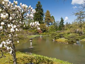 Japanese Gardens Part of Washington Park Arboretum, Seattle, Washington, USA by Trish Drury
