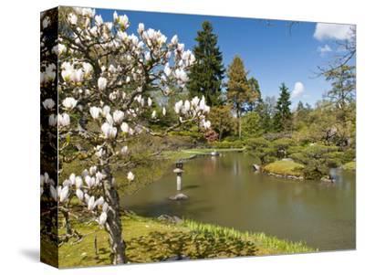 Japanese Gardens Part of Washington Park Arboretum, Seattle, Washington, USA