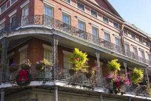 LA, New Orleans. Buildings with Balcony Gardens at Jackson Square by Trish Drury