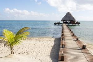 Placencia, Belize. Roberts Grove Resort. Bar on Roof Covered Pier by Trish Drury