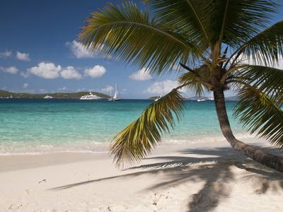 Tranquil White Sand Beach, St John, United States Virgin Islands, USA, US Virgin Islands, Caribbean