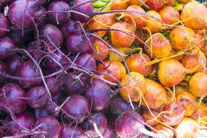 USA, California Baywood, Los Osos Farmers Market by Trish Drury