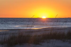 USA, MS, Bay St Louis. Sun Sets Gulf of Mexico. Beach Grasses by Trish Drury