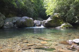 USA, North Carolina, Great Smoky Mountains National Park. Big Creek Trail. Midnight Hole by Trish Drury