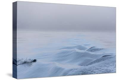 Washington State, Puget Sound Wake Patterns on Calm Water Reflecting Moody Light. Dense Fog