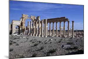 Triumphal Arch of Septimius Severus and Main Colonnaded Street of Palmyra