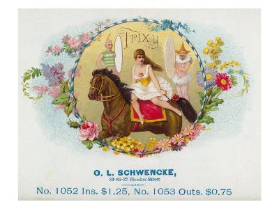 Trixy Brand Cigar Box Label-Lantern Press-Art Print