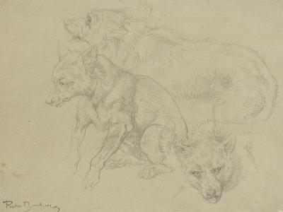 Trois études de loups-Rosa Bonheur-Giclee Print